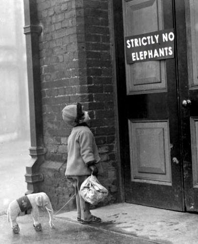 Elephantgirlfromohhello